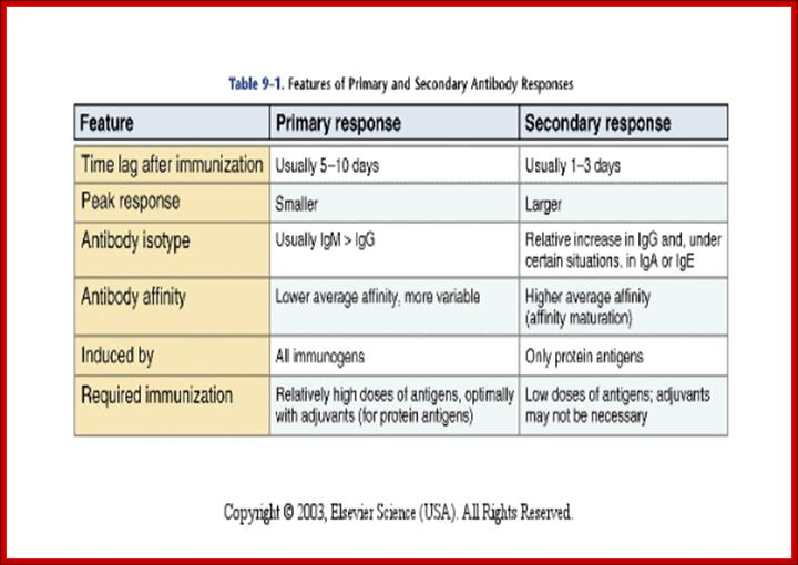 Immunology5