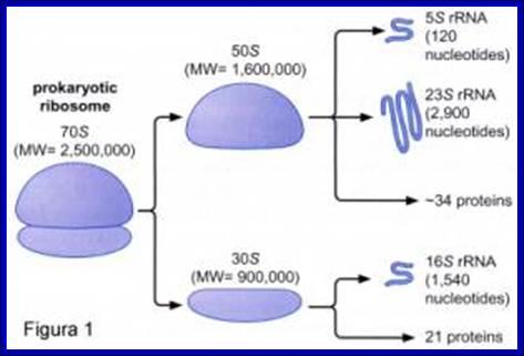 modulo12_clip_image002_b
